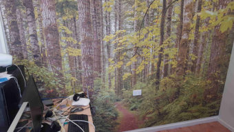Printed Wall Graphics from Capcopy Printing Rockhampton
